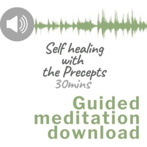 Audio download image for Guided meditation self healing with the precepts