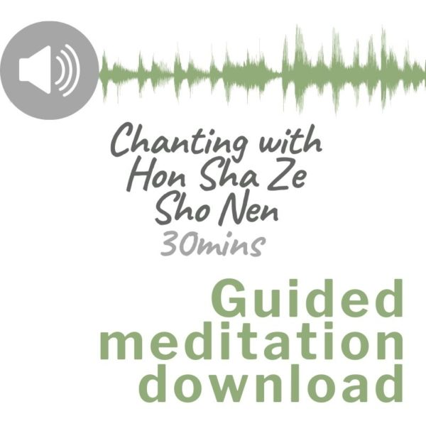 Audio download image for Guided meditation chanting with Hon Sha Ze Sho Nen