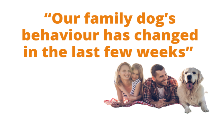 Picture of a family with a dog