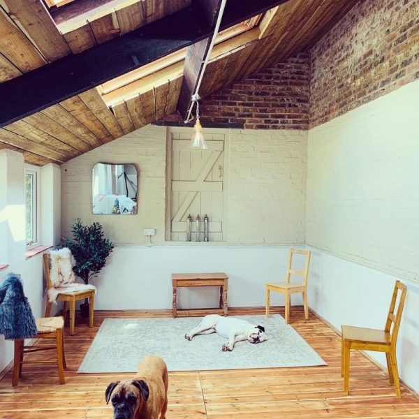A picture of Ali's treatment room with one dog led down in the middle